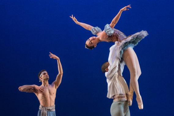 USF: Dance
