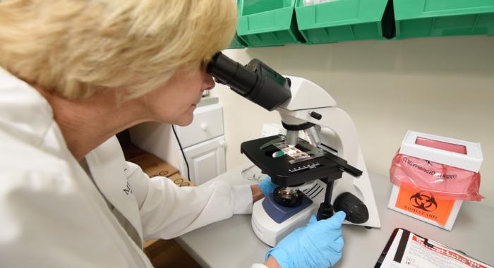 Millennium Physician Group: Lab Services